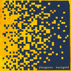 "Pinegrove ""Marigold"" CD"