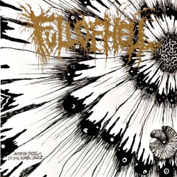 "Full Of Hell ""Amber Mote In The Black Vault"" 7"""