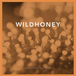 "Wildhoney ""Seventeen Forever"" 7"""