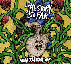 "The Story So Far ""What You Don't See"" CD"