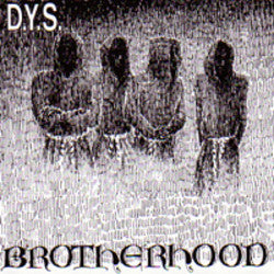 "DYS ""Brotherhood""  LP"