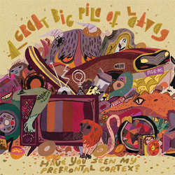 "A Great Big Pile Of Leaves ""Have You Seen My Prefrontal Cortex?"" 2xLP"