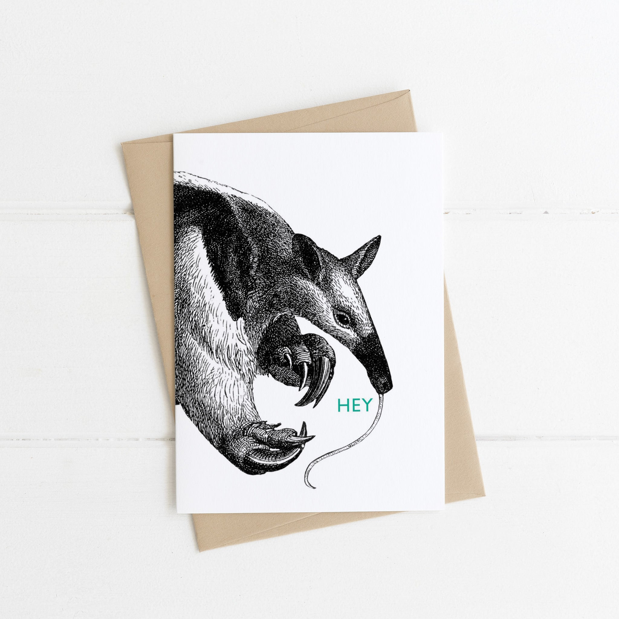 Hey Anteater Card