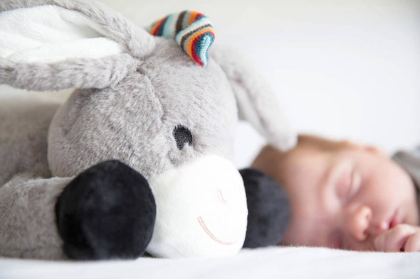 Don the Donkey Sleeping with baby
