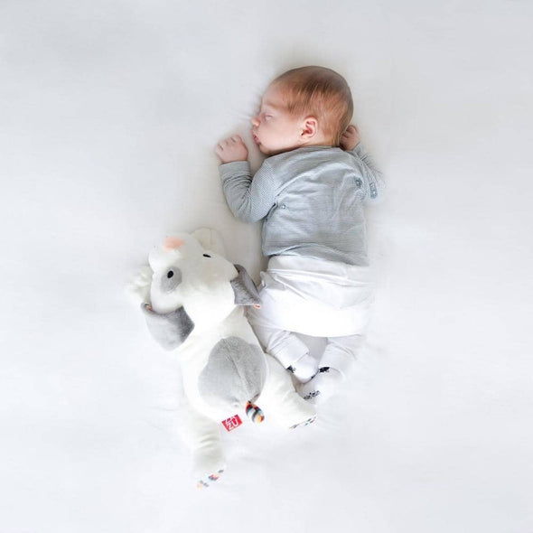 Baby sleeping with Dex the dog