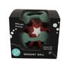 Sensory Ball Teether and Fidget 2 Pack