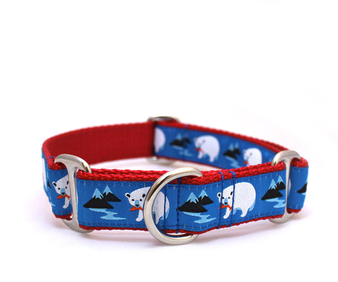 "1"" Bear Mountain Dog Collar"