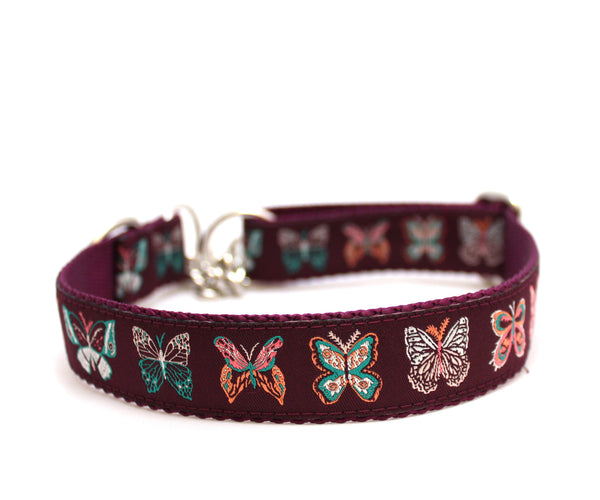 "1"" Plums Butterfly Garden Dog Collar"