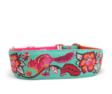 "1.5"" Chipmunk Dog Collar"
