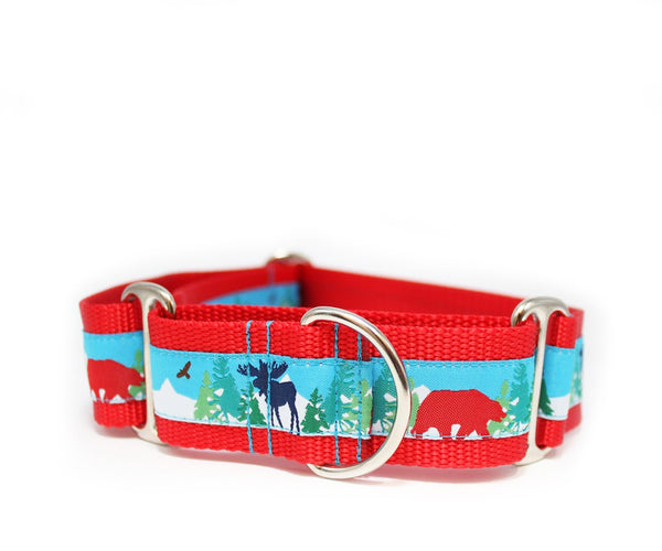"1.5"" Mountain Adventure Dog Collar"
