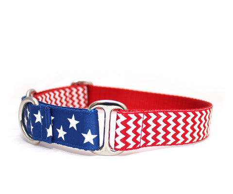 "1"" American Hound Dog Collar"