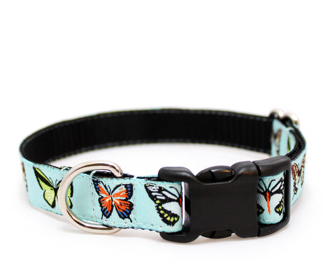 "3/4"" Social Butterfly Dog Collar"