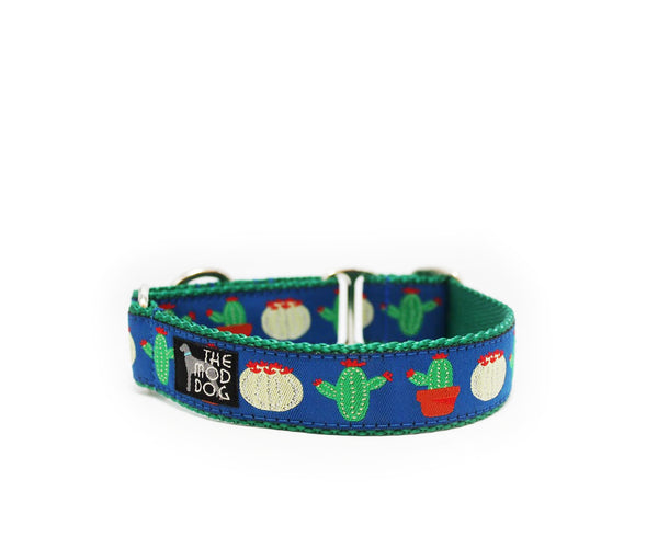 "1"" You Prickle My Fancy Dog Collar"