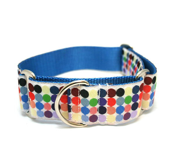 "1.5"" Candied Island Dog Collar"