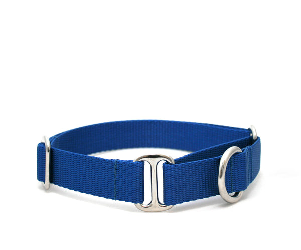 "1"" Cullen Nylon Dog Collar"