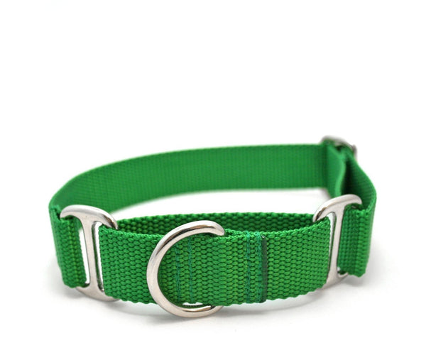 "1"" Cullen Dog Collar with flat ID tag"