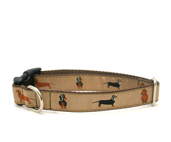 "3/4"" Doxie Dog Collar"