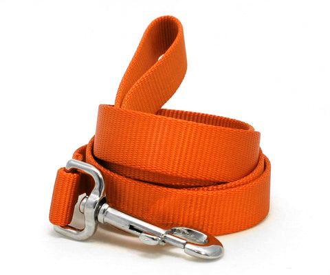 "The Cullen dog leash 6' long (1"" width)"