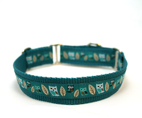 "1"" Owl Always Love You Dog Collar"
