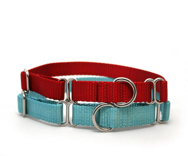 "3/4"" dog collar The Swan buckle or martingale dog collar"
