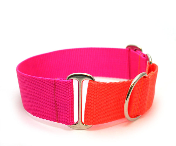 "1.5"" Cullen Dog Collar"