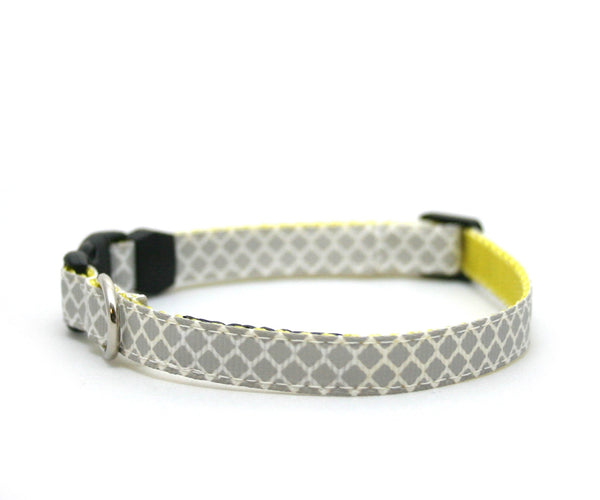 "3/8"" Brooklyn to Phoenix tiny buckle collar"