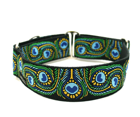 "1.5"" Royal Peacock buckle or martingale collar"