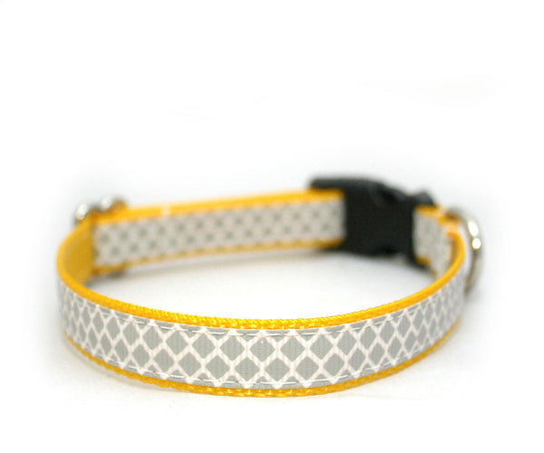 "3/8"" cat collar Brooklyn to Phoenix tiny dog or cat buckle collar"