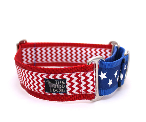 "1.5"" American Hound Martingale Dog Collar"