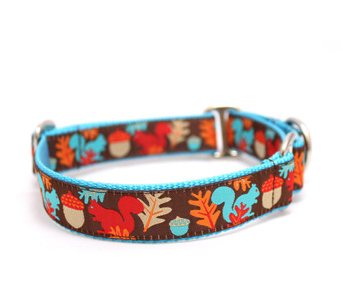 "1"" Squirrels Are Nuts Dog Collar"
