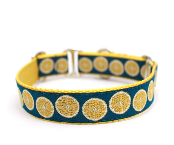 "1"" Lemon Slice Dog Collar"