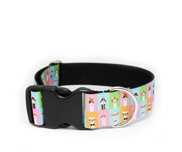 "1.5"" Llama's Around the World Dog Collar"