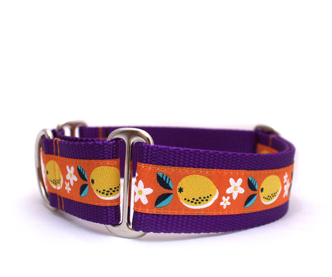 "1.5"" Juicy Lemons Dog Collar"