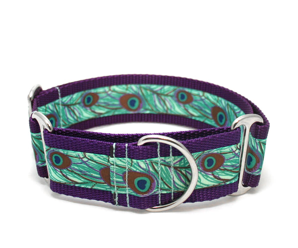 "1.5"" Peacock Feather Dog Collar"