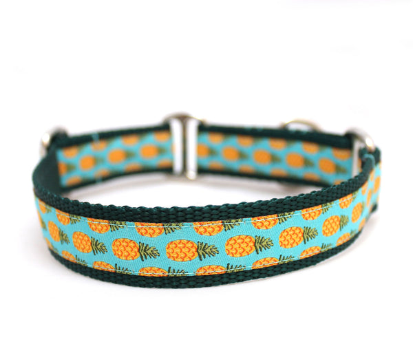 "3/4"" Spring into Summer Larger Dog Collar"