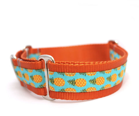 "1.5"" Pineapple Dog Collar"