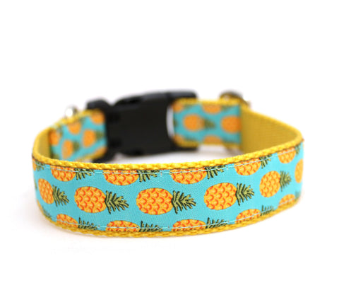 "1"" Pineapple Dog Collar"