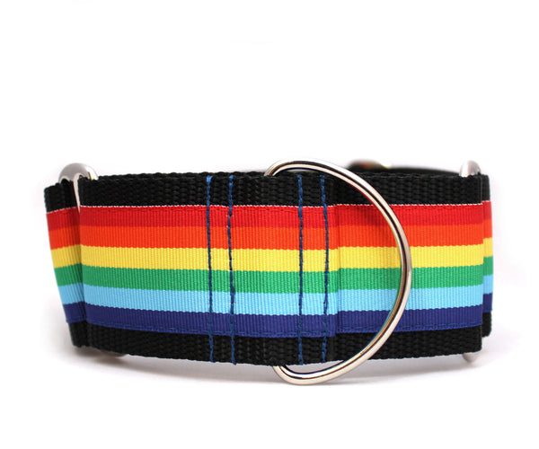 "2"" Somewhere...Rainbow dog collar"