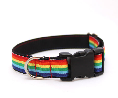 "3/4"" Somewhere....Rainbow Dog Collar"