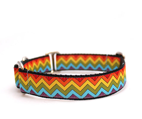 "1"" Rainbow Road Dog collar"