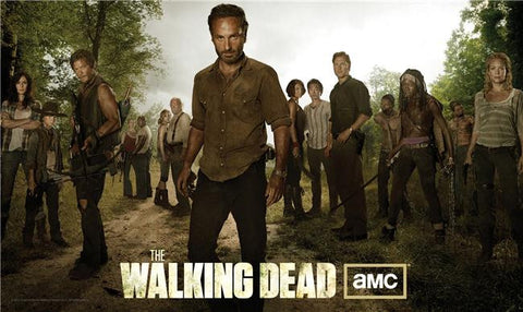 The Walking Dead Silk Print TV Shows Poster 126