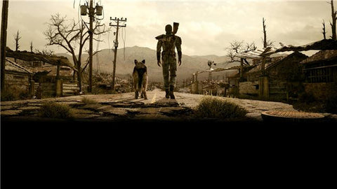 Fallout 3 Silk Print Games Poster 017