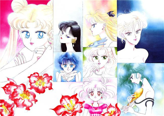 Sailor Moon Silk Print Animes Poster 099