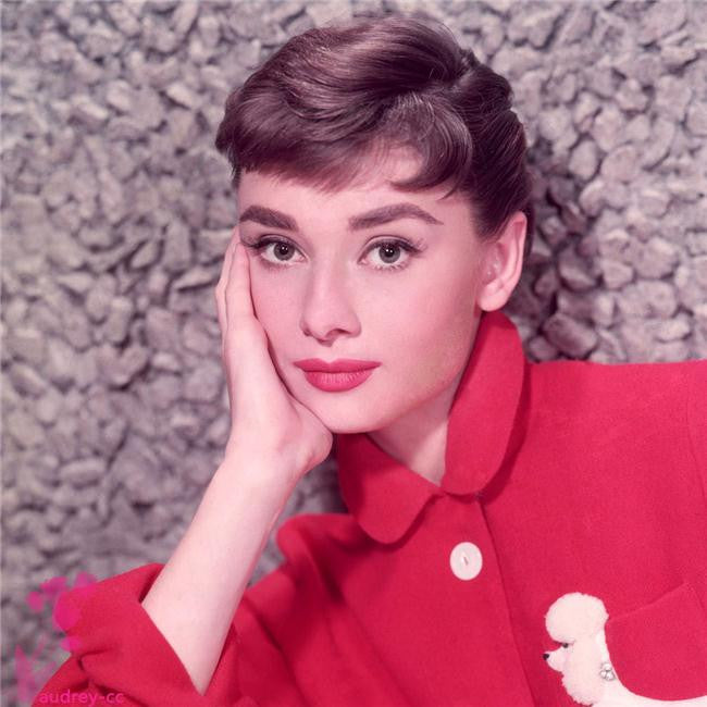 Audrey Hepburn Silk Print Artists Poster 041
