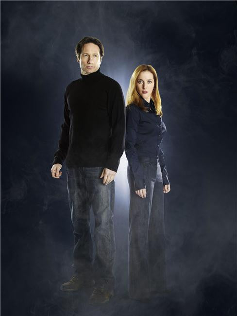 X Files I Want to Believe Silk Print Movies Poster 007