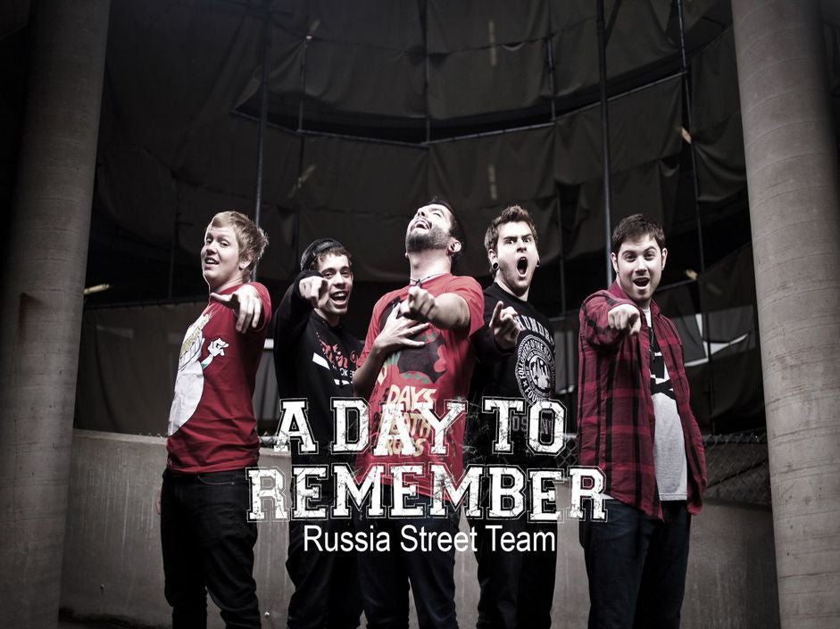 A Day to Remember Music Silk Print Poster 020