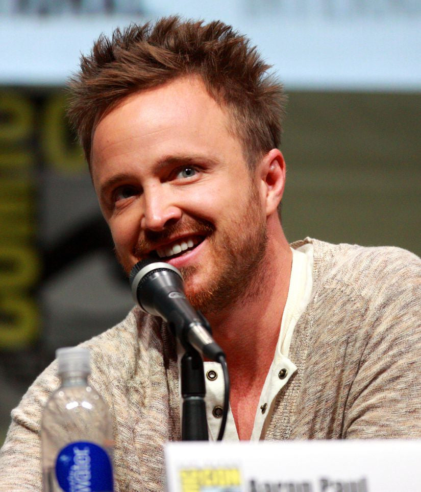 Aaron Paul Artists Silk Print Poster 000