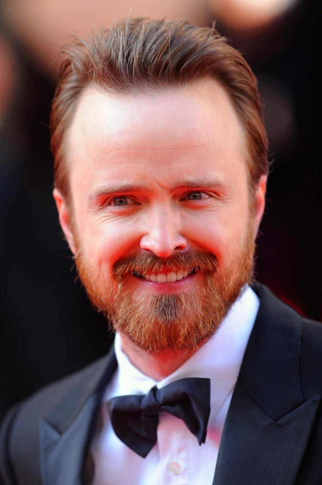 Aaron Paul Artists Silk Print Poster 004