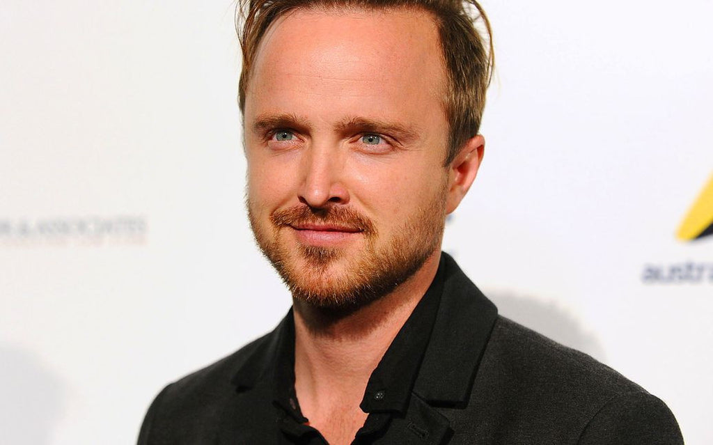 Aaron Paul Artists Silk Print Poster 011