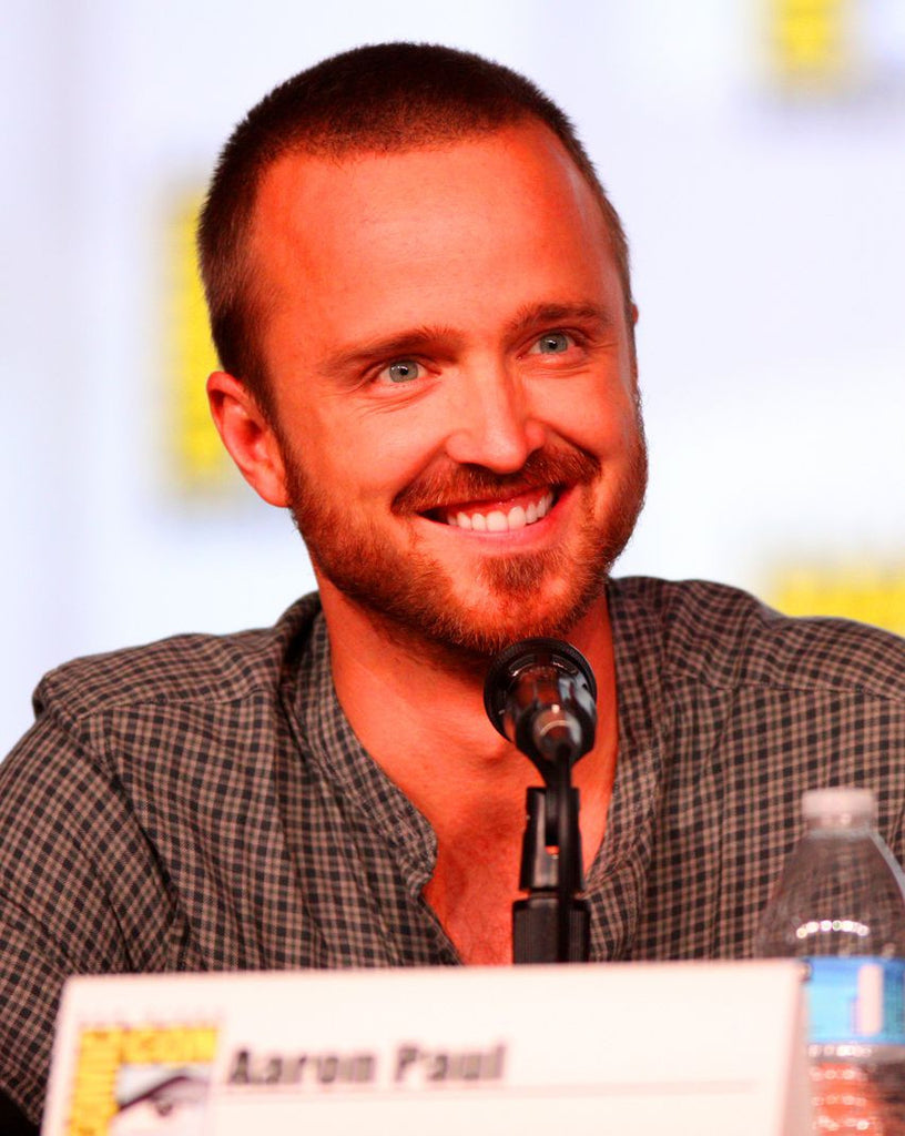 Aaron Paul Artists Silk Print Poster 016